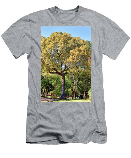 Autumn In Summer Men's T-Shirt (Slim Fit) by Joan Bertucci