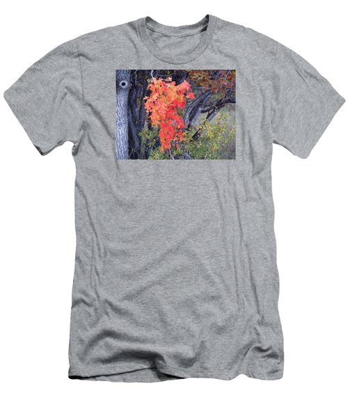 Autumn Oak Leaves Men's T-Shirt (Slim Fit) by Deborah Moen