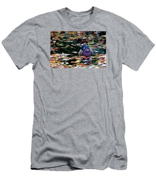 Autumn Wood Duck Men's T-Shirt (Athletic Fit)
