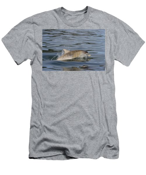 Baby Bottlenose Dolphin - Scotland  #35 Men's T-Shirt (Athletic Fit)