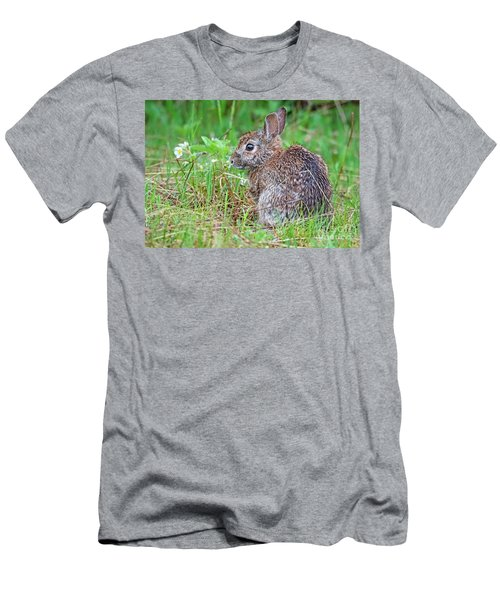 Baby Bunny Men's T-Shirt (Athletic Fit)