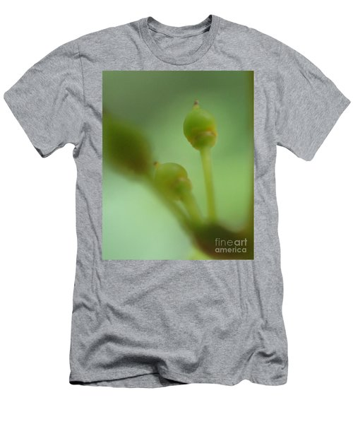 Baby Grapes Men's T-Shirt (Slim Fit) by Christina Verdgeline