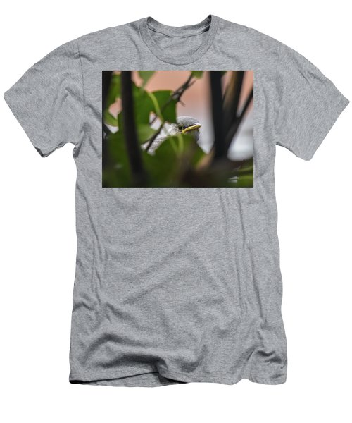 Baby Mockingbird II  Men's T-Shirt (Athletic Fit)