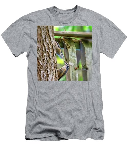 Baby Nuthatch 4 Men's T-Shirt (Athletic Fit)
