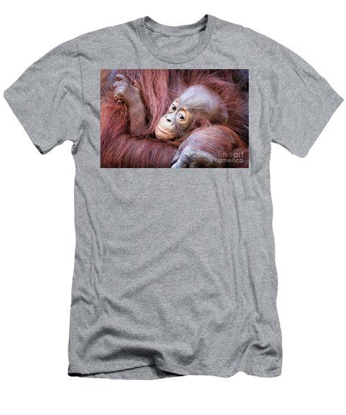 Baby Orangutan Men's T-Shirt (Slim Fit) by Stephanie Hayes