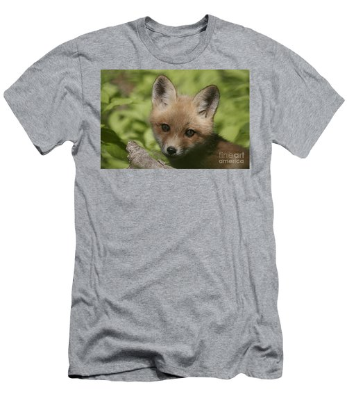 Baby Red Fox Men's T-Shirt (Athletic Fit)