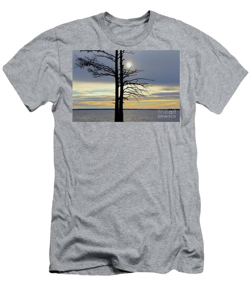 Bald Cypress Silhouette Men's T-Shirt (Athletic Fit)