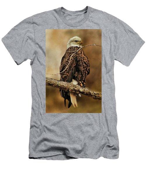 Bald Eagle Perch Men's T-Shirt (Slim Fit) by TnBackroadsPhotos