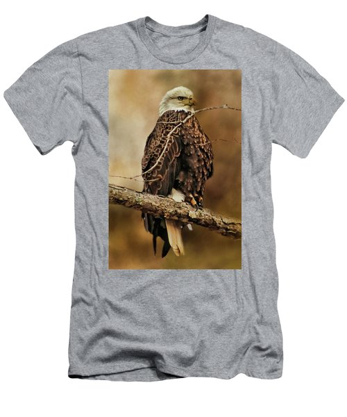Bald Eagle Perch Men's T-Shirt (Athletic Fit)