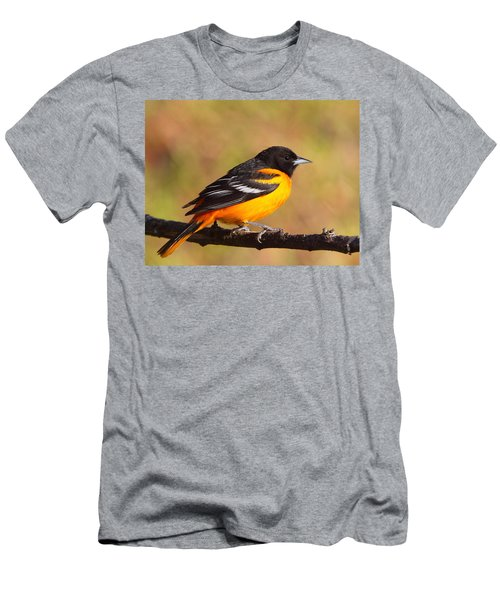 Baltimore Oriole IIi Men's T-Shirt (Athletic Fit)