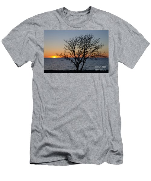 Bare Tree At Sunset Men's T-Shirt (Slim Fit) by Kennerth and Birgitta Kullman