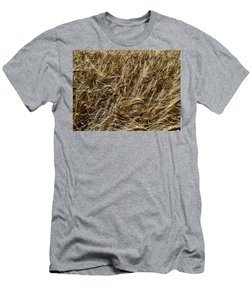 Men's T-Shirt (Athletic Fit) featuring the photograph Barley by RKAB Works