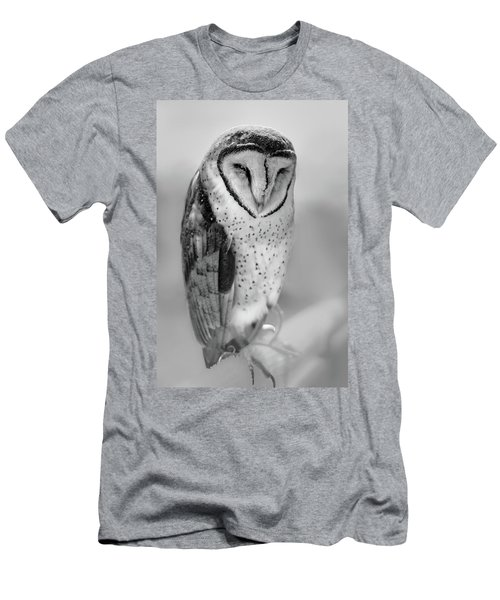 Barn Owl II Men's T-Shirt (Athletic Fit)