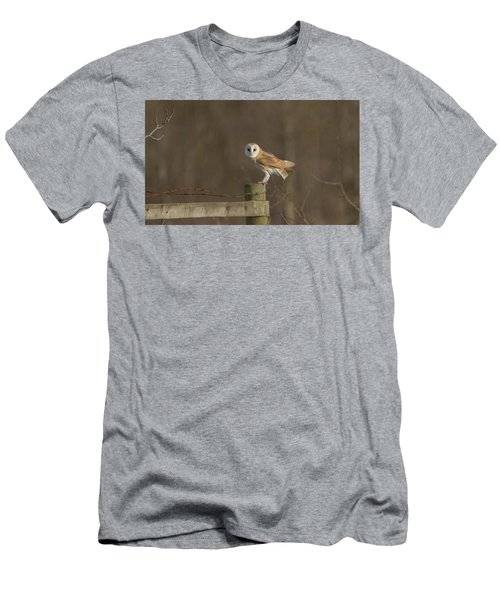 Barn Owl On Fence Men's T-Shirt (Athletic Fit)