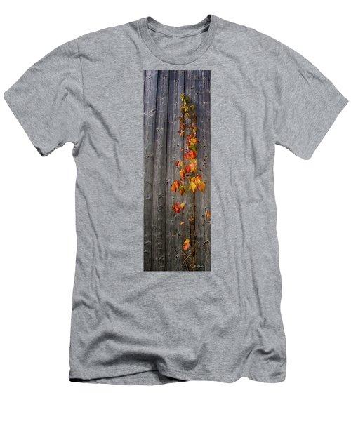 Barnyard Vine Men's T-Shirt (Athletic Fit)
