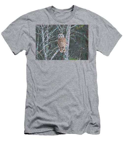 Barred Owl 1396 Men's T-Shirt (Slim Fit) by Michael Peychich