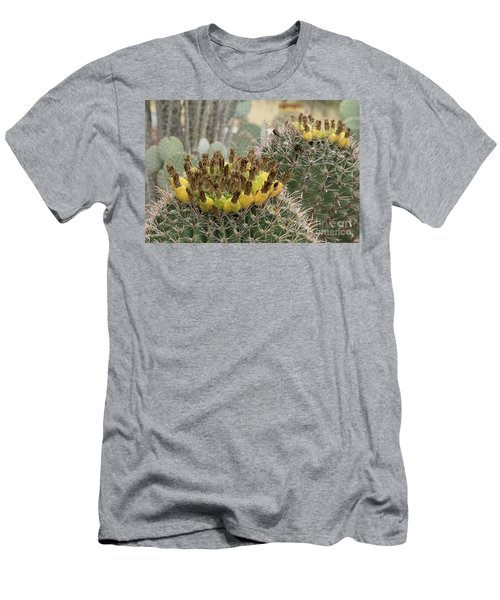 Barrel Cactus Closeup Men's T-Shirt (Slim Fit) by Anne Rodkin