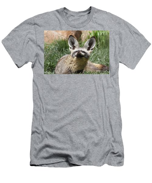 Bat-eared Fox Men's T-Shirt (Athletic Fit)