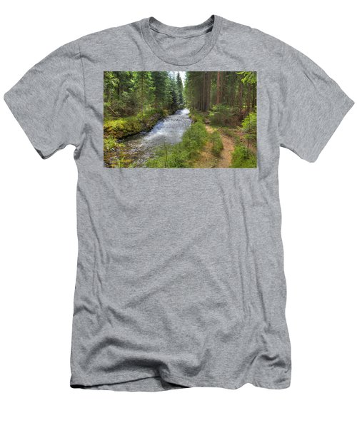 Bavarian Forest Stream Men's T-Shirt (Athletic Fit)