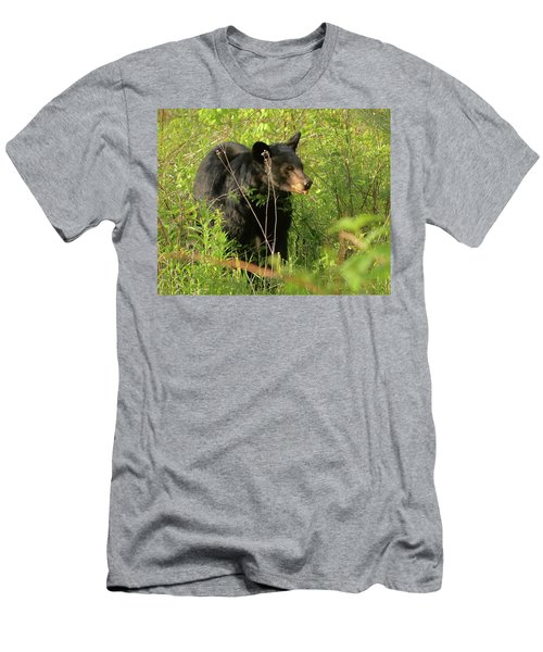 Bear In The Grass Men's T-Shirt (Athletic Fit)