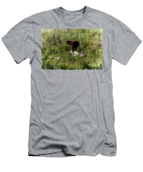 Bear2 Men's T-Shirt (Athletic Fit)