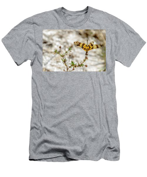 Beautiful Dragonfly Men's T-Shirt (Athletic Fit)