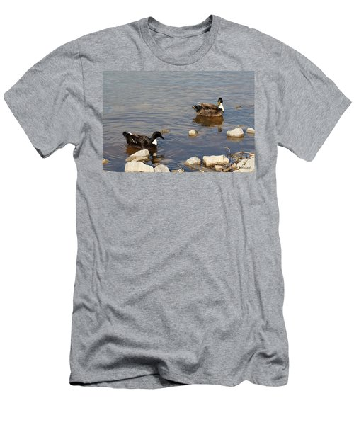 Beautiful Ducks Men's T-Shirt (Athletic Fit)