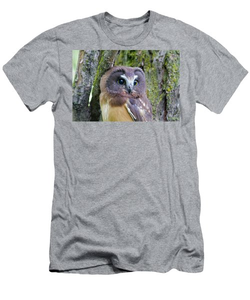 Beautiful Eyes Of A Saw-whet Owl Chick Men's T-Shirt (Athletic Fit)