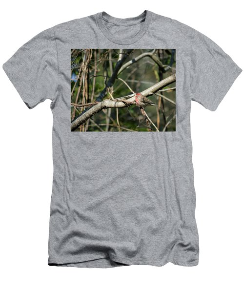 Beautiful Winter Day Men's T-Shirt (Slim Fit) by Cathy Harper
