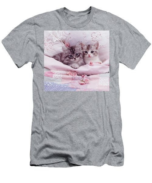 Bedtime Kitties Men's T-Shirt (Athletic Fit)
