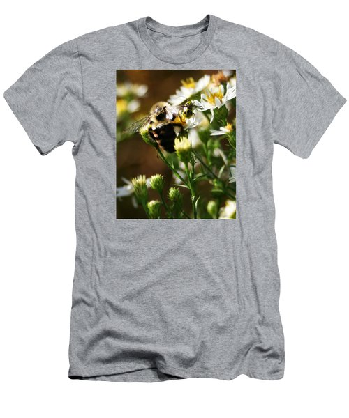 Bee And Spotted Cucumber Beetle On Aster Men's T-Shirt (Athletic Fit)