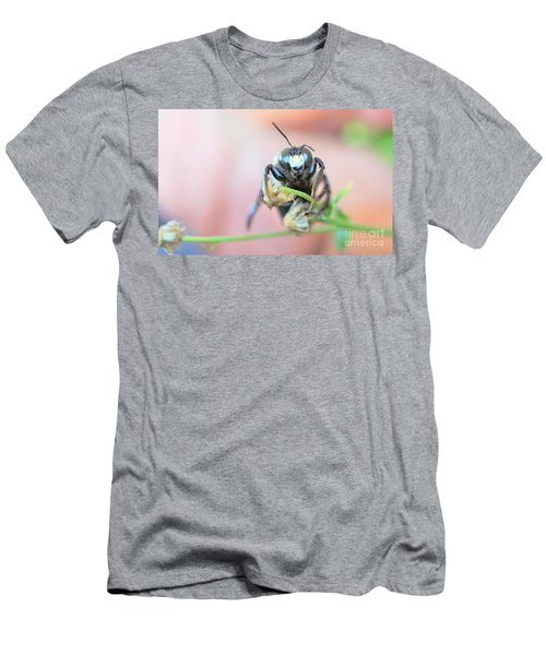 Bee Busy Men's T-Shirt (Athletic Fit)