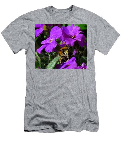 Bee Feeding On Purple Flower Men's T-Shirt (Slim Fit) by John Topman