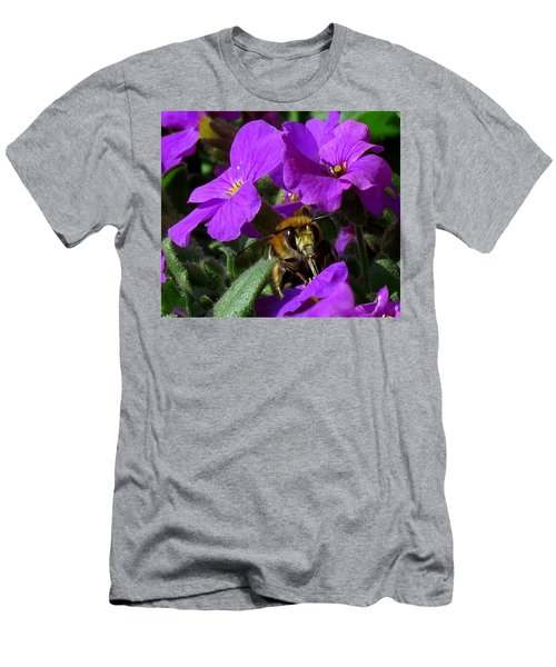 Bee Feeding On Purple Flower Men's T-Shirt (Athletic Fit)