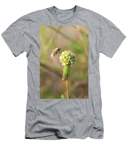 Bee Fly On A Wildflower Men's T-Shirt (Slim Fit) by Christopher L Thomley