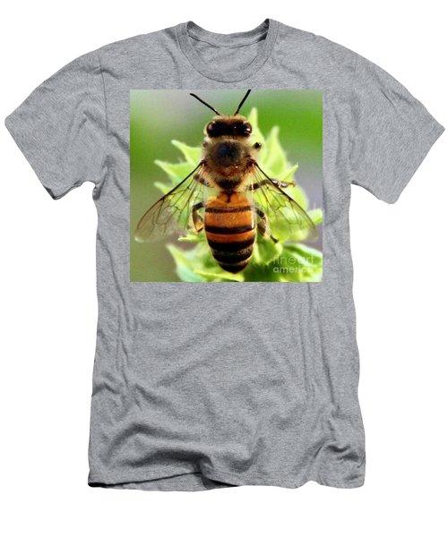 BEE Men's T-Shirt (Athletic Fit)