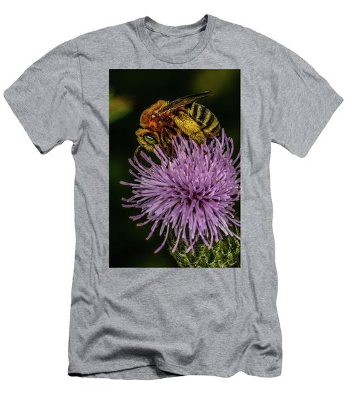Men's T-Shirt (Slim Fit) featuring the photograph Bee On A Thistle by Paul Freidlund