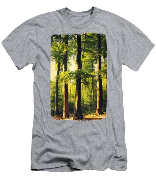 Beech Tree Forest In Evening Light Men's T-Shirt (Athletic Fit)