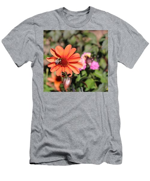 Bees-y Day Men's T-Shirt (Athletic Fit)