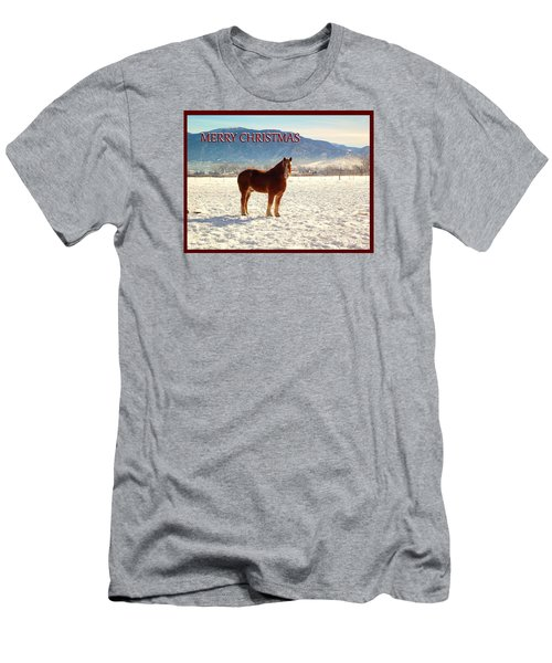Belgium Draft Horse Christmas Men's T-Shirt (Slim Fit) by Deborah Moen