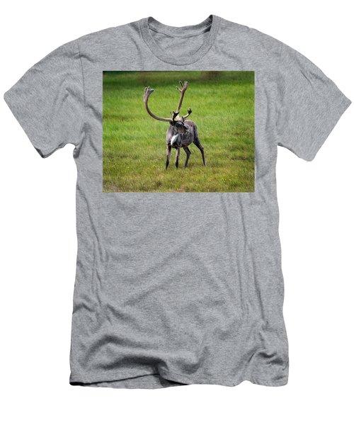 Big Horn Men's T-Shirt (Athletic Fit)