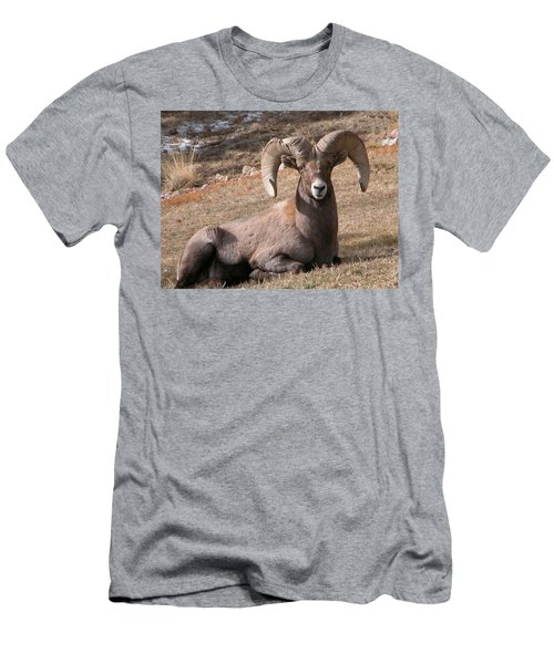 Men's T-Shirt (Athletic Fit) featuring the photograph Big Horn Sheep by Joseph R Luciano
