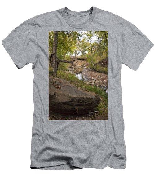 Big Stone Creek Men's T-Shirt (Slim Fit) by Ricky Dean