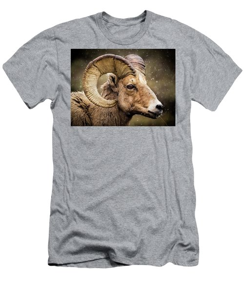 Bighorn Sheep In Winter Men's T-Shirt (Athletic Fit)