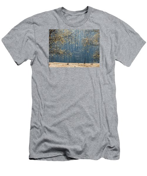 Birch Forest To The Morning Sun Men's T-Shirt (Slim Fit) by Odon Czintos