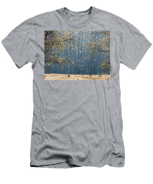 Birch Forest To The Morning Sun Men's T-Shirt (Athletic Fit)