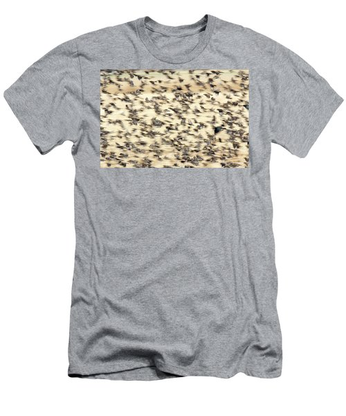 Bird Blizzard Men's T-Shirt (Athletic Fit)
