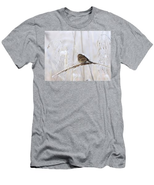 Bird In First Frost Men's T-Shirt (Athletic Fit)