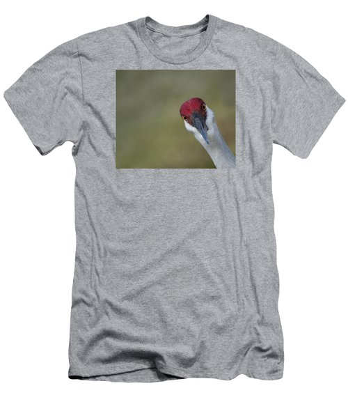 Bird Watching Men's T-Shirt (Slim Fit) by Elizabeth Eldridge