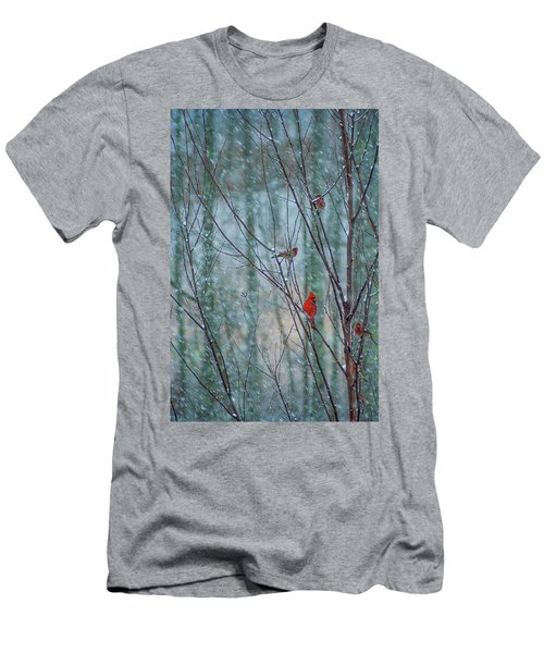 Birds On A Snowy Day Men's T-Shirt (Athletic Fit)